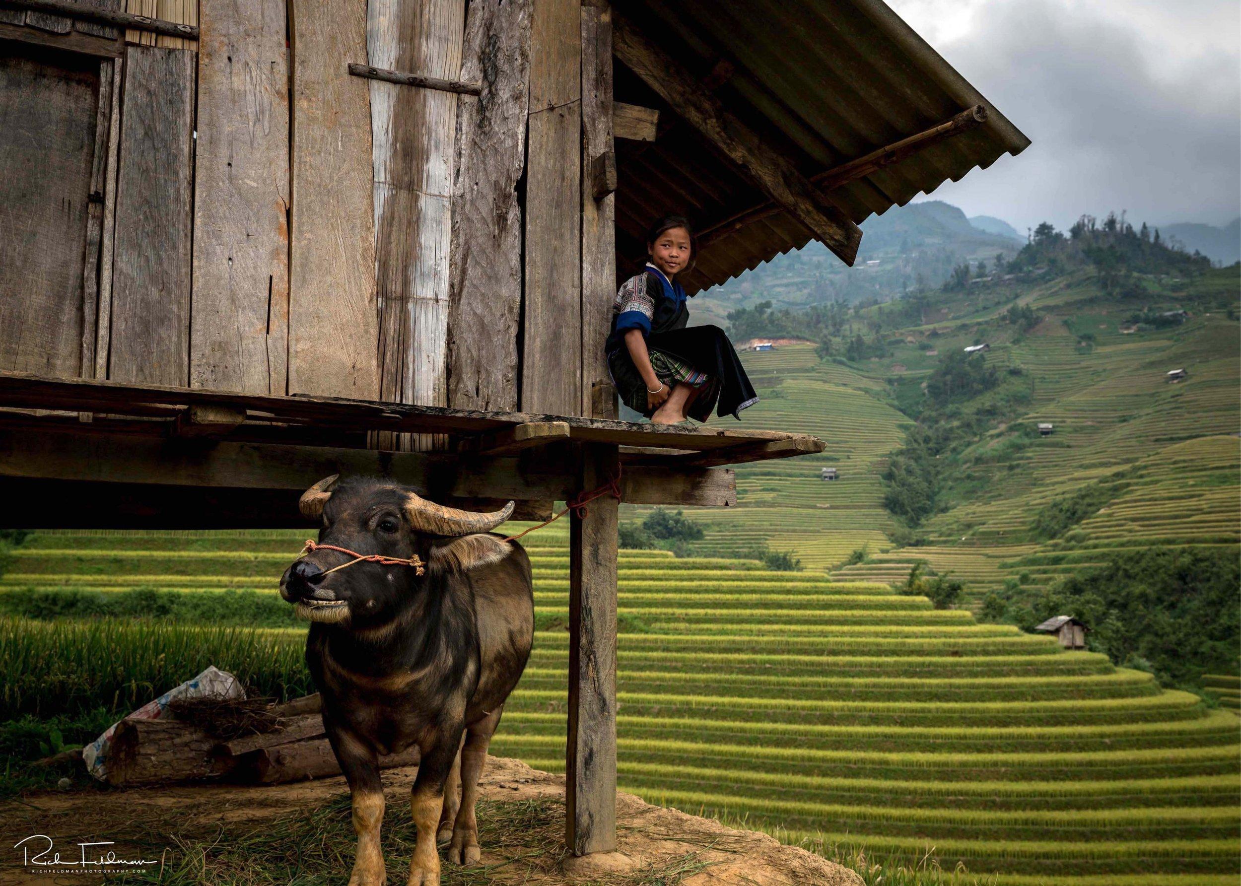 Vietnam-selects-13-2880x2056.jpg