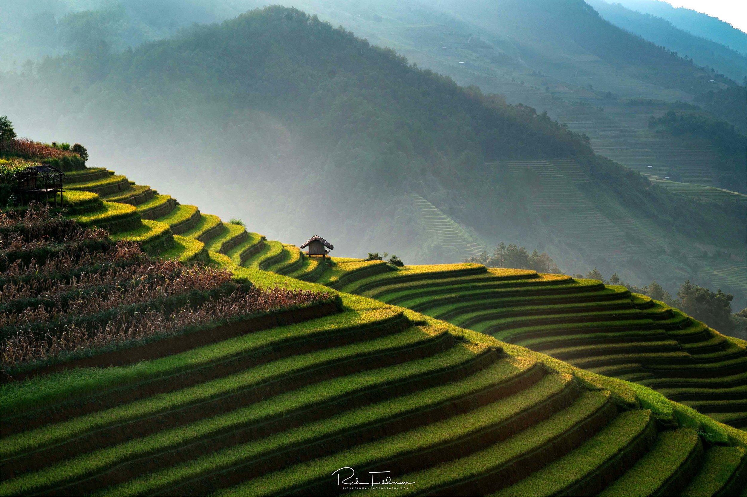 Vietnam selects-66.jpg