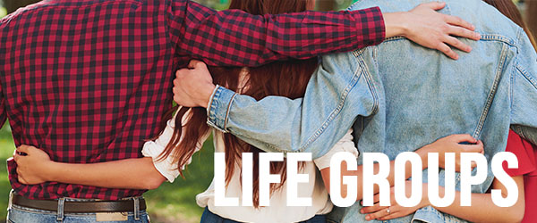 new here - life groups.jpg