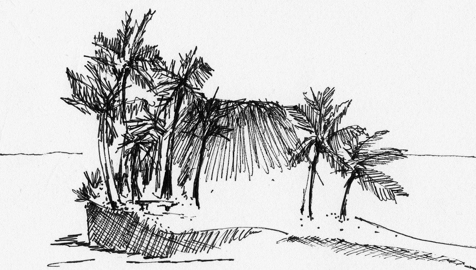 JenJonesArchitecture_Fiji-sketch01.jpeg