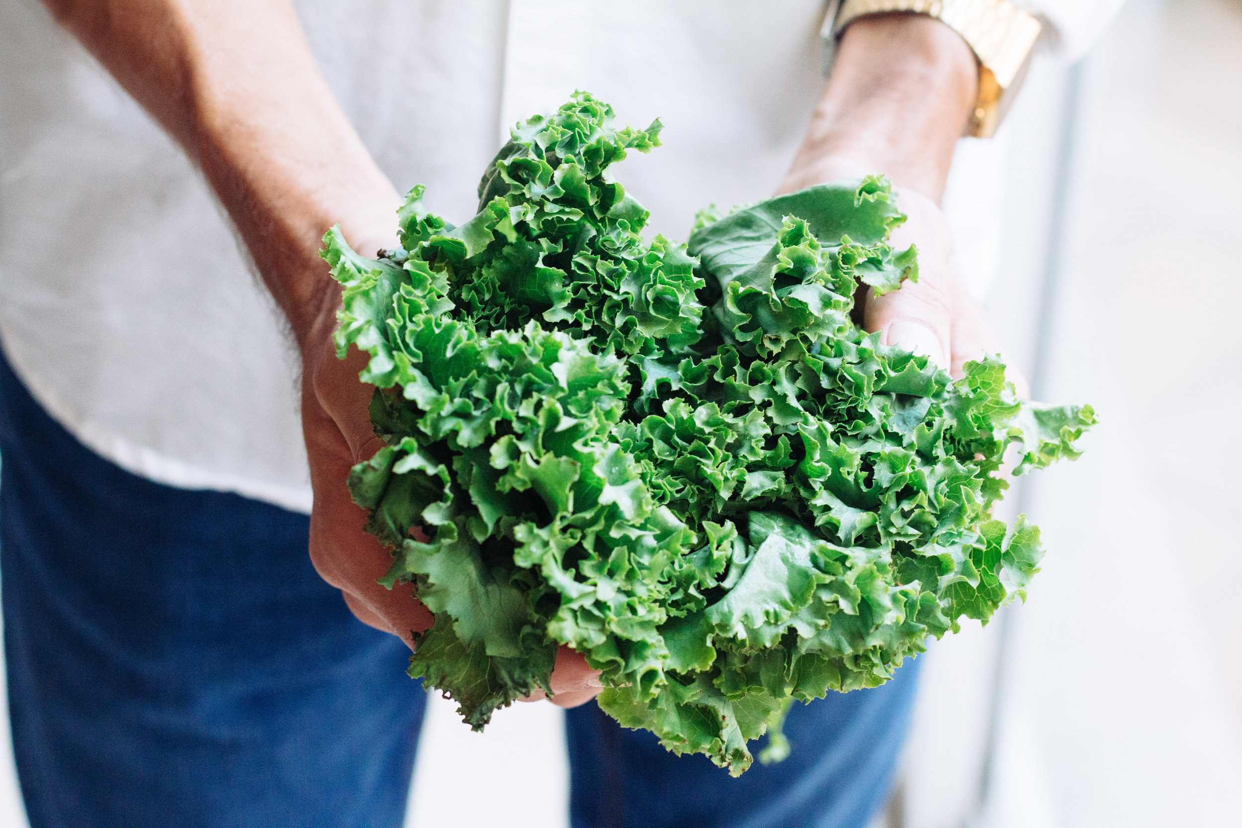 Toss these into your juicer: - 2 Handfuls Kale2 Handfuls Spinach2 Cucumbers1 Knuckle Ginger1 Lemon1 Lime1 AppleMakes 36oz of juice