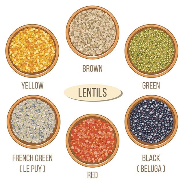 types-of-lentils.jpg
