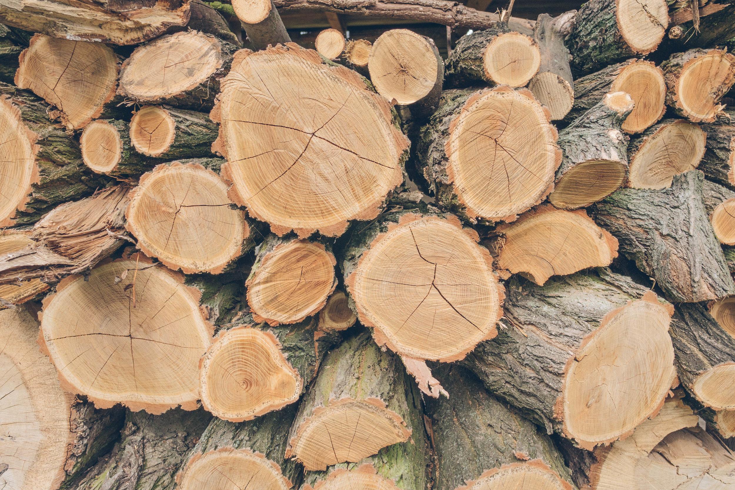 drewno przygotowane na ognisko balkonowe na jesień w naszym polskim goscinny palac.