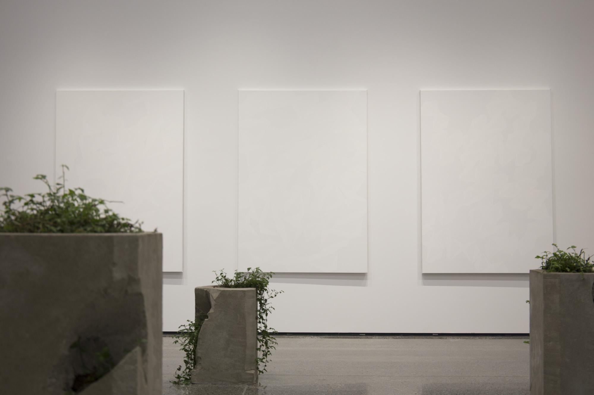 Front to back: Claudia Dunes,  Impluvium , 2016; Jeena Shin,  Fractus 1–3 , 2012