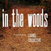 in_the_woods_festival.jpg