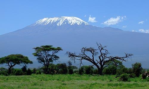 Sababu_Safaris_Kilimanjaro_500x300px.jpg