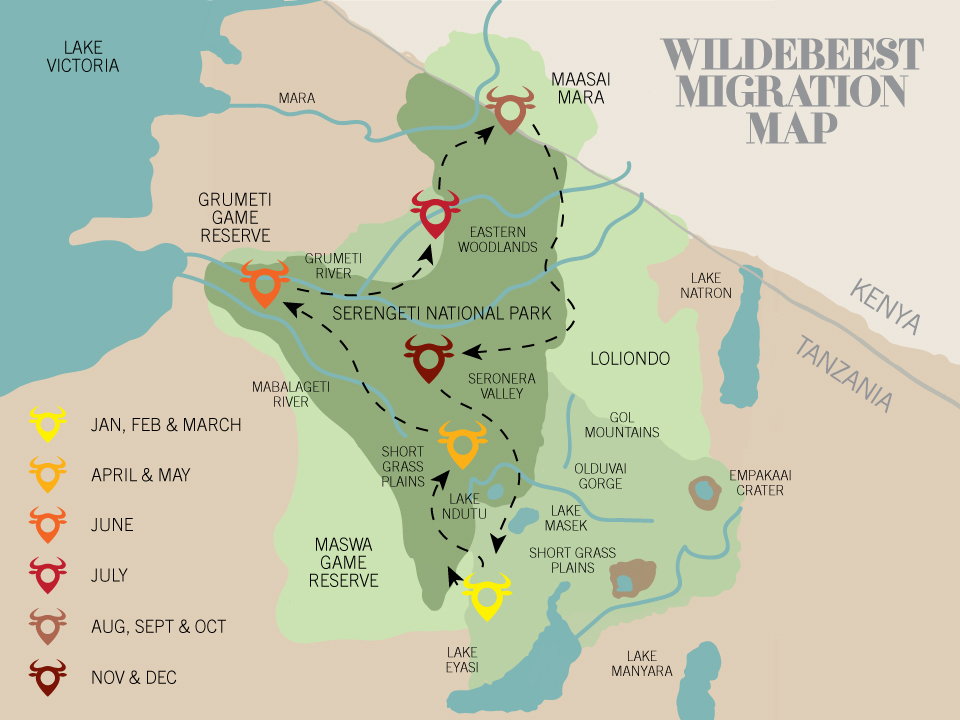 wildebeest-migration-map.jpg