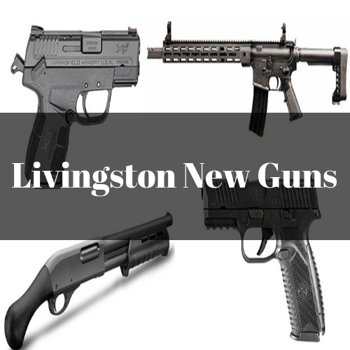 Livingston New Guns