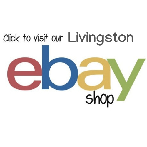 Ebay Livingston