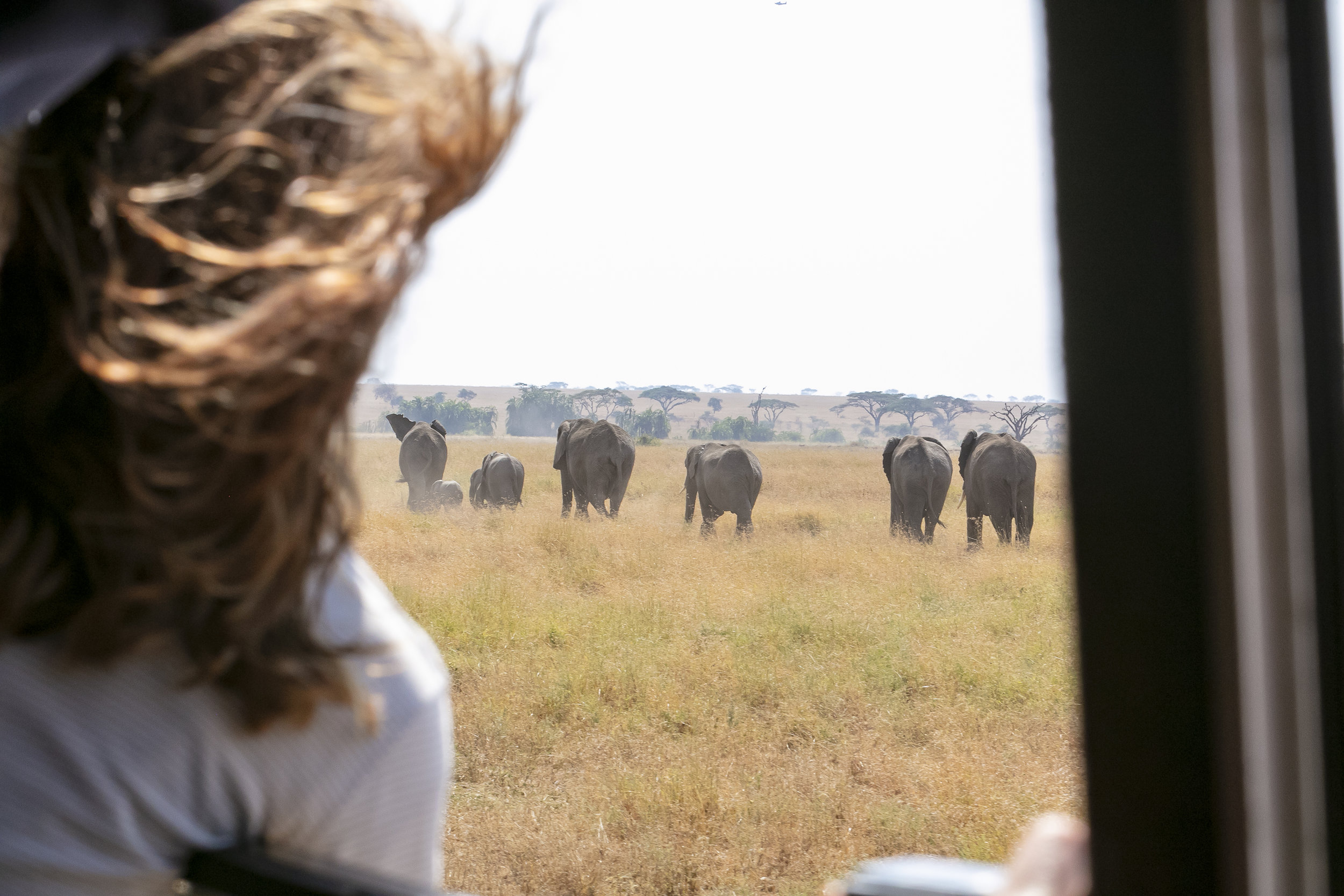 African Adventure - 29 July '18 - Serengeti National Park - 031.JPG