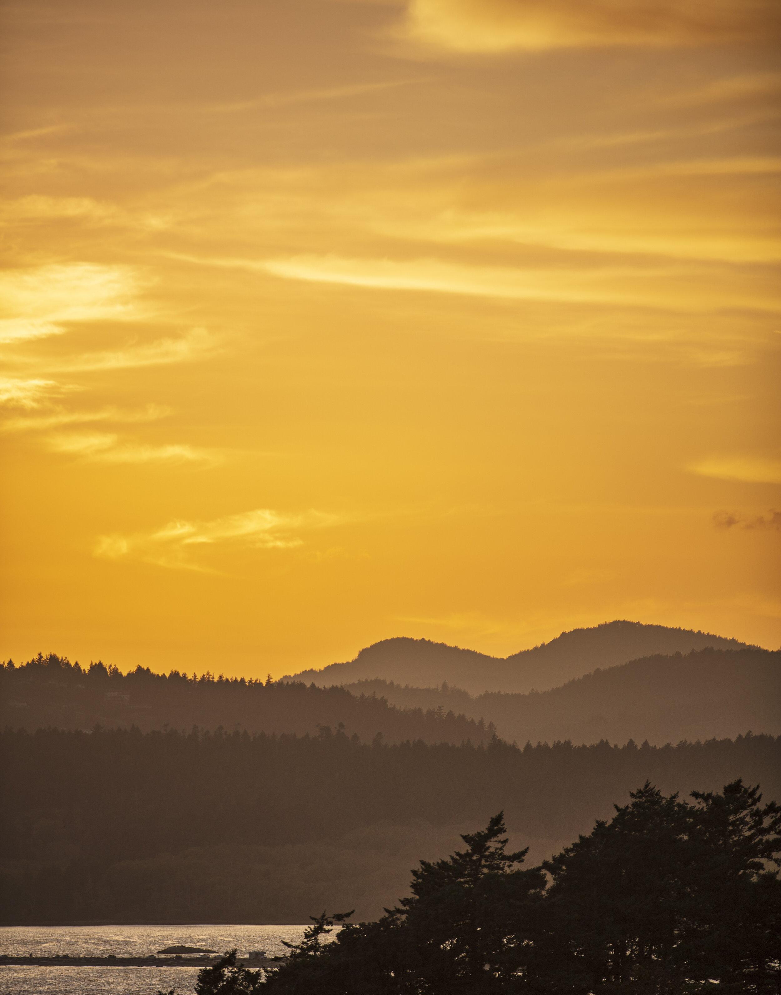 24 Sep '19 - JT.Foulds©2019