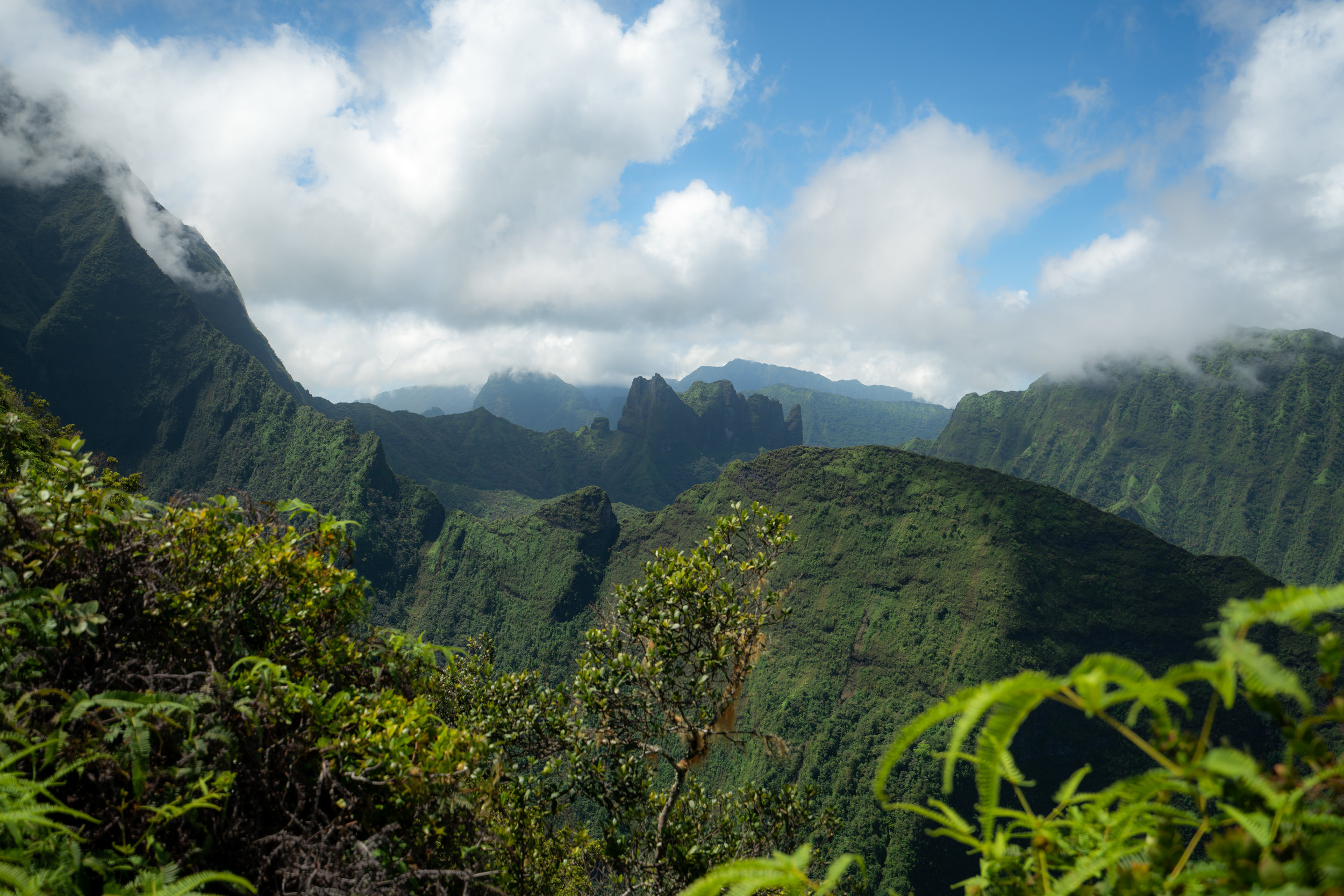 View from Mont Aorai Trail