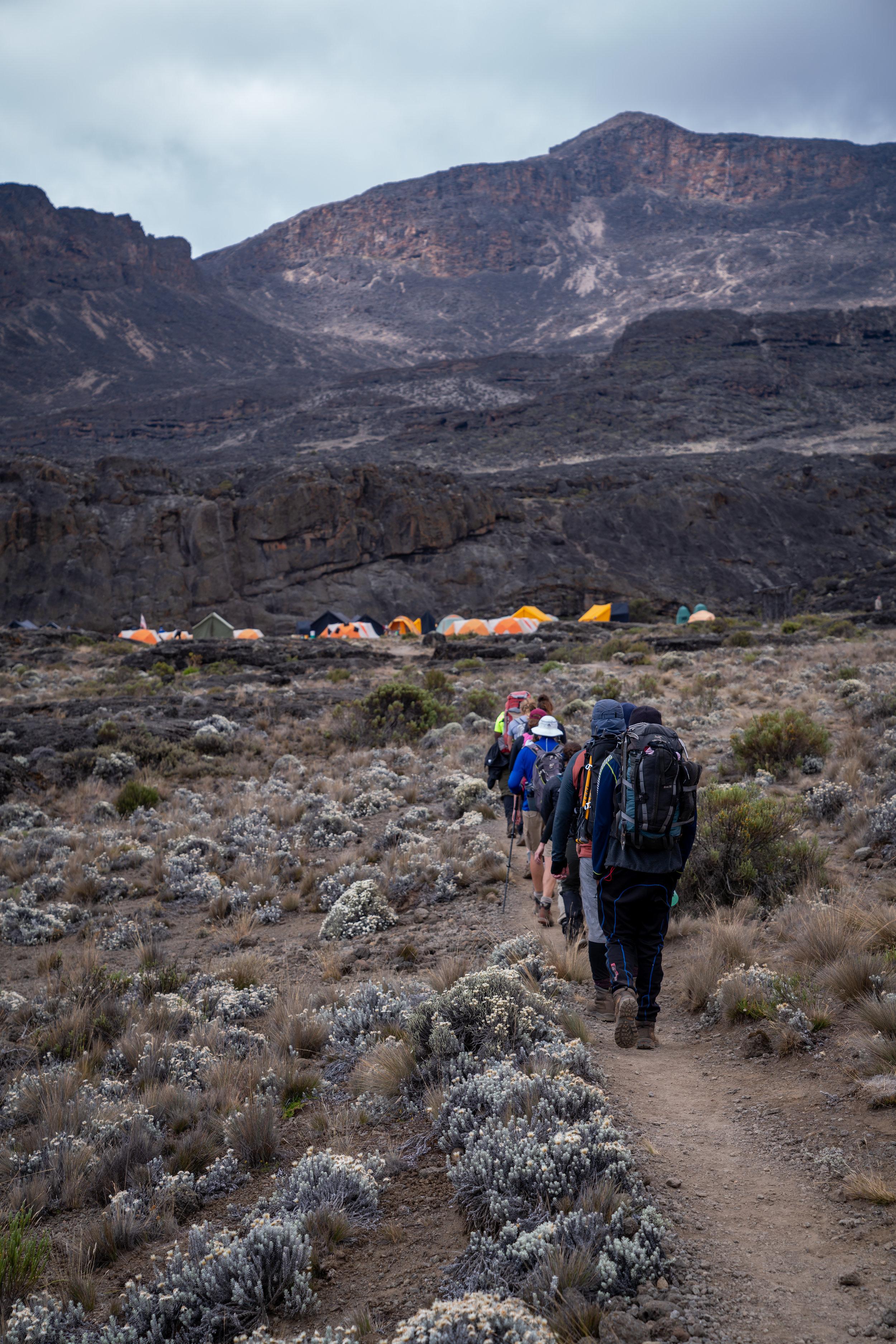 Approaching Moir Camp