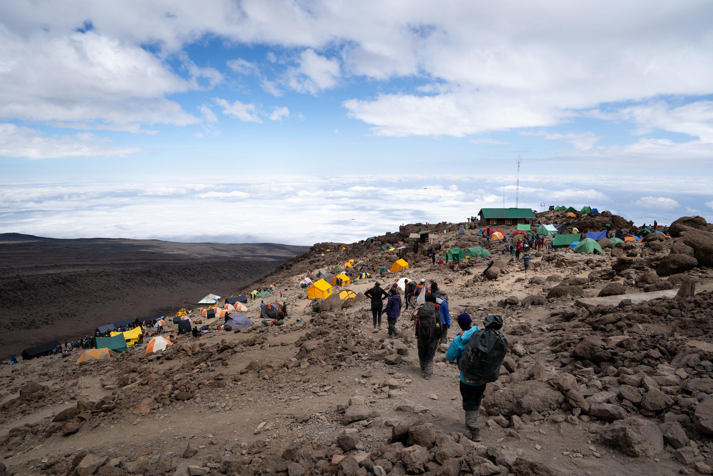 Barafu Camp (15,331 feet)