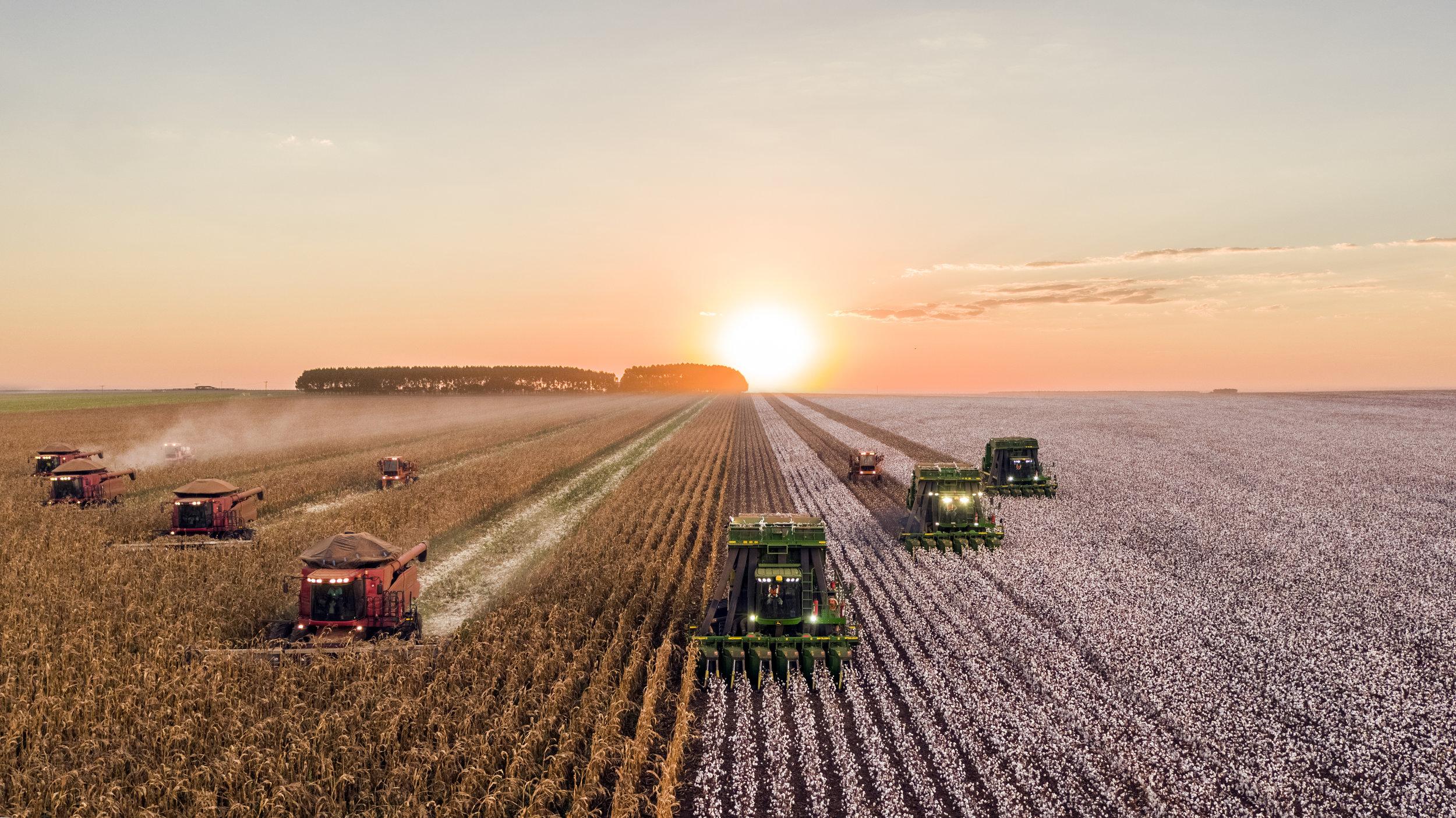 A fleet of tractors plowing a field. Credit: Joao Marcelo Marques/Unsplash