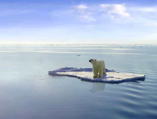 Image Source: Climate Change News