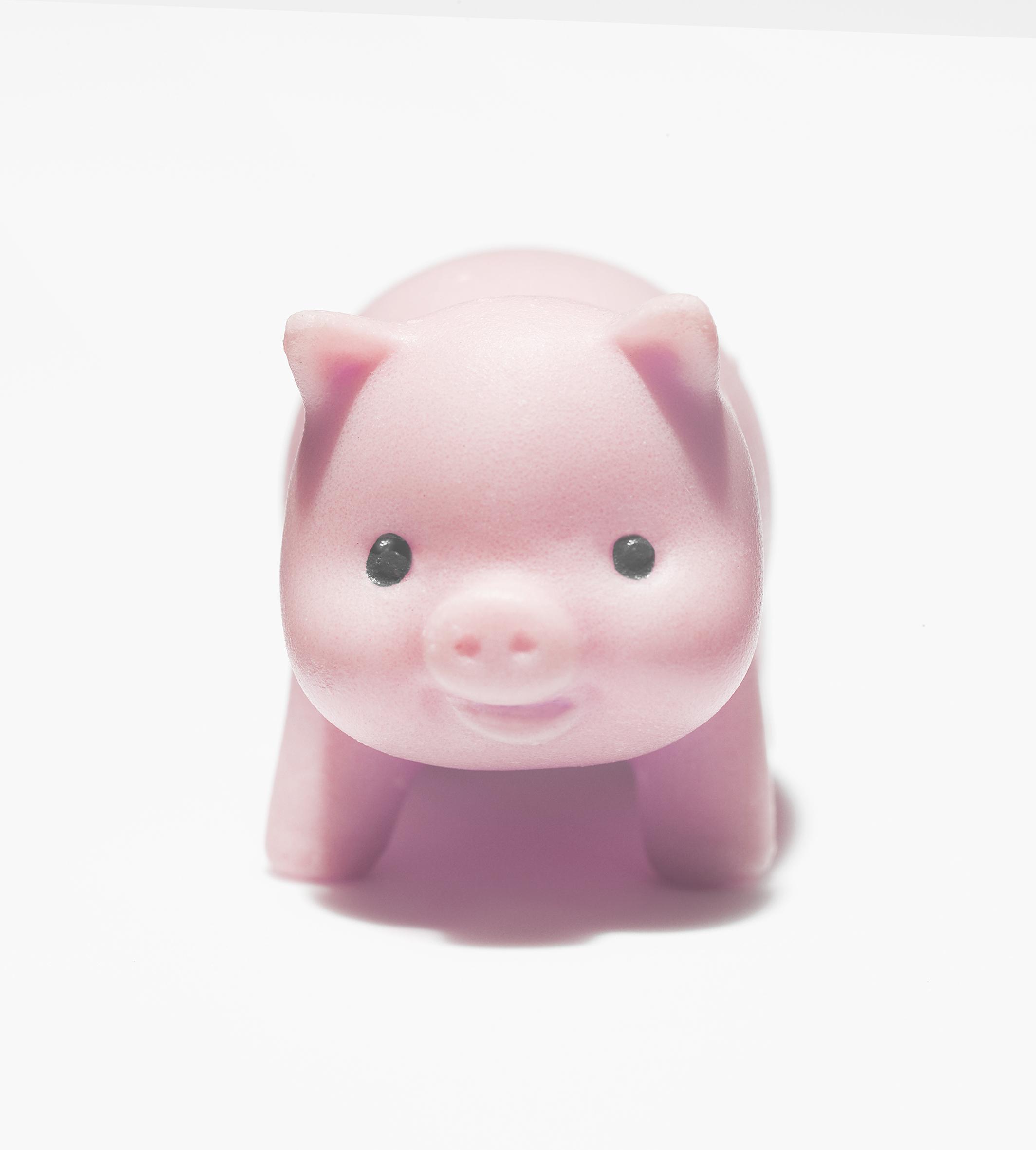Piglet02-HR.jpg