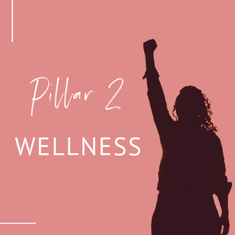 shadow of woman with fist in the air, text overlay 'Pillar 2 Wellness'_Lifestyle Design Strategist_miarmiller.com