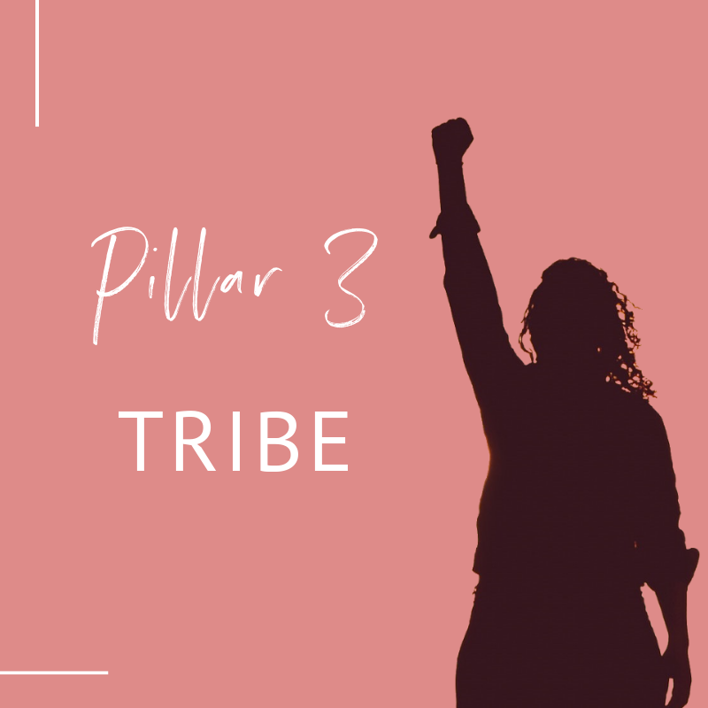 shadow of woman with fist in the air, text overlay 'Pillar 3 Tribe'_Lifestyle Design Strategist_miarmiller.com