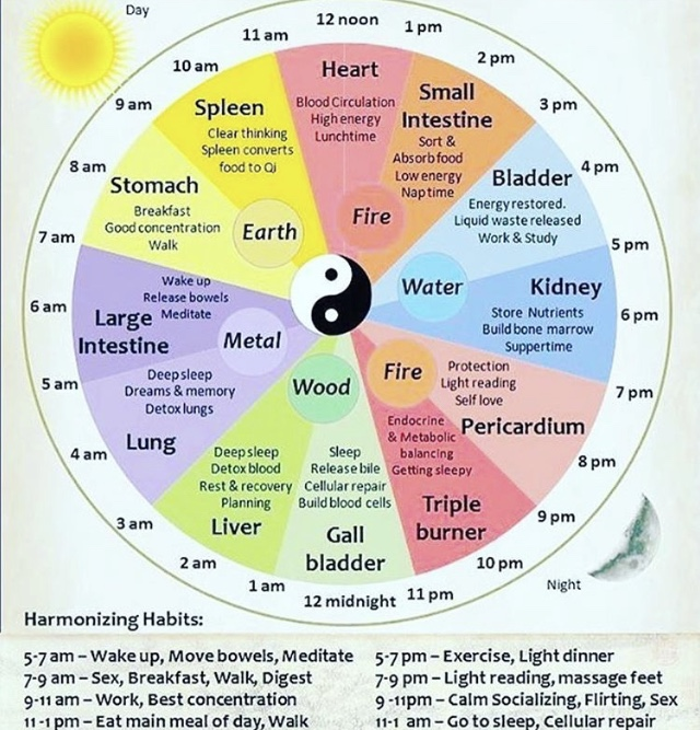 This is the Chinese medicine organ clock which explains the order in which the Qi flows thru the specific organ systems.