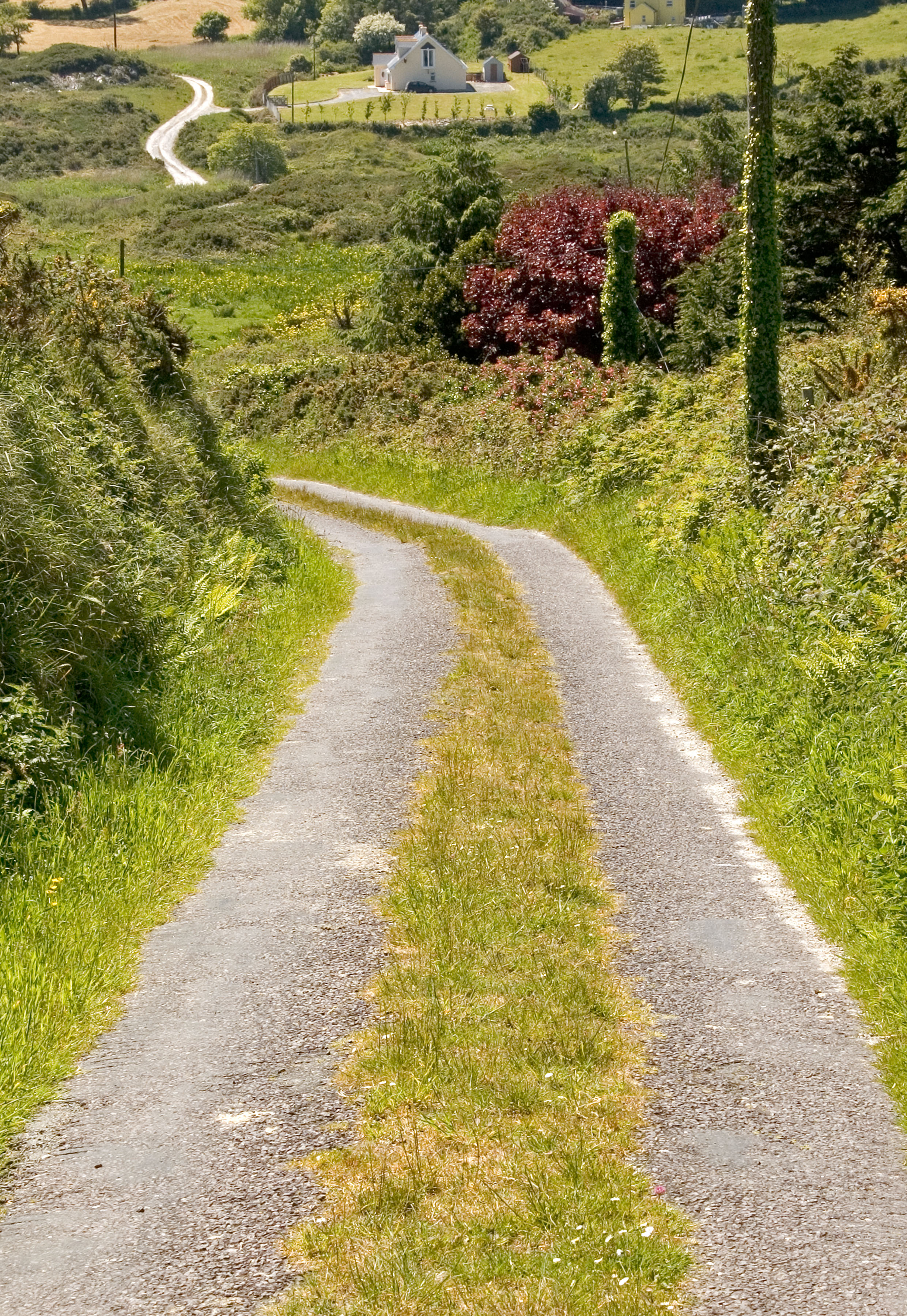 Co Cork winding road 2.jpg