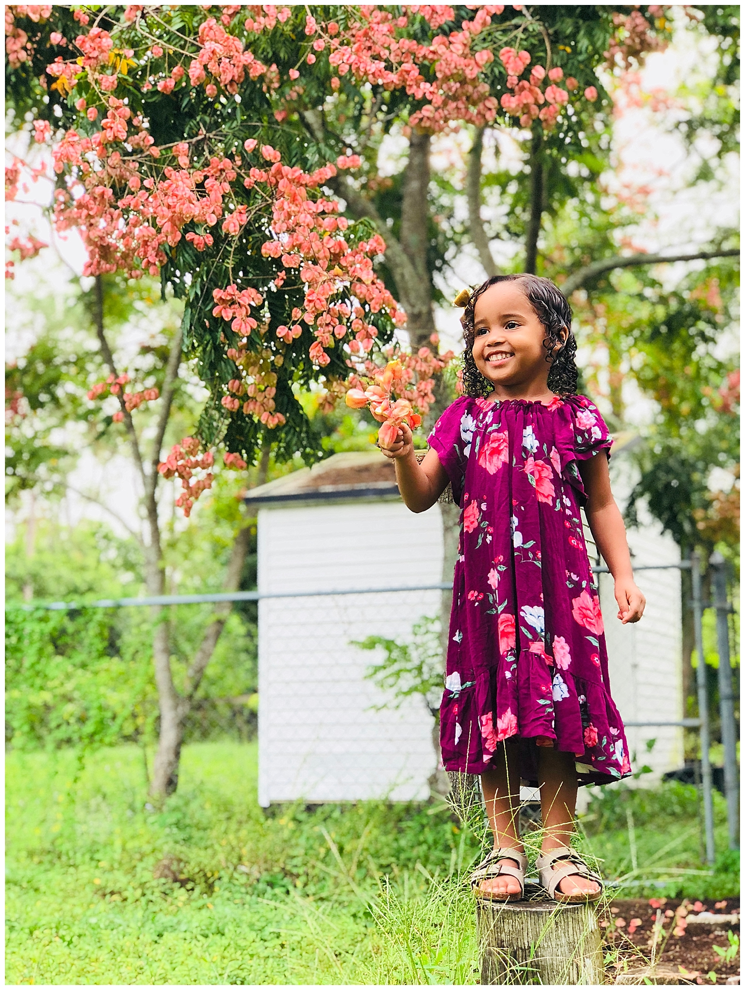 This is my 4-year-old daughter. I simply wanted a cute photo of her in front of this pretty tree with pink blossoms that's in our backyard.