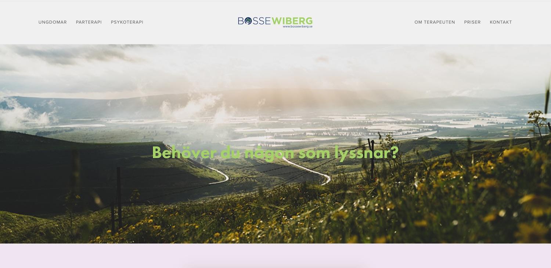 Bosse Wiberg - Lönsam annonsering på GoogleRankar högt på utvalda sökordFler får hjälp av Bosse