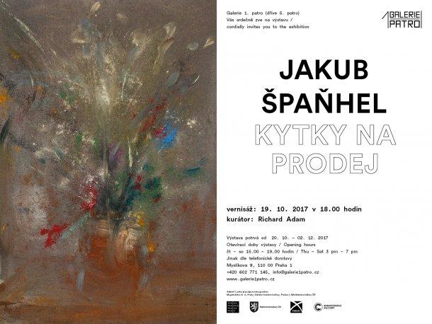 g1p-jakub-spanhel-el-04.galerie1patro-glr-detail-610x458.jpg