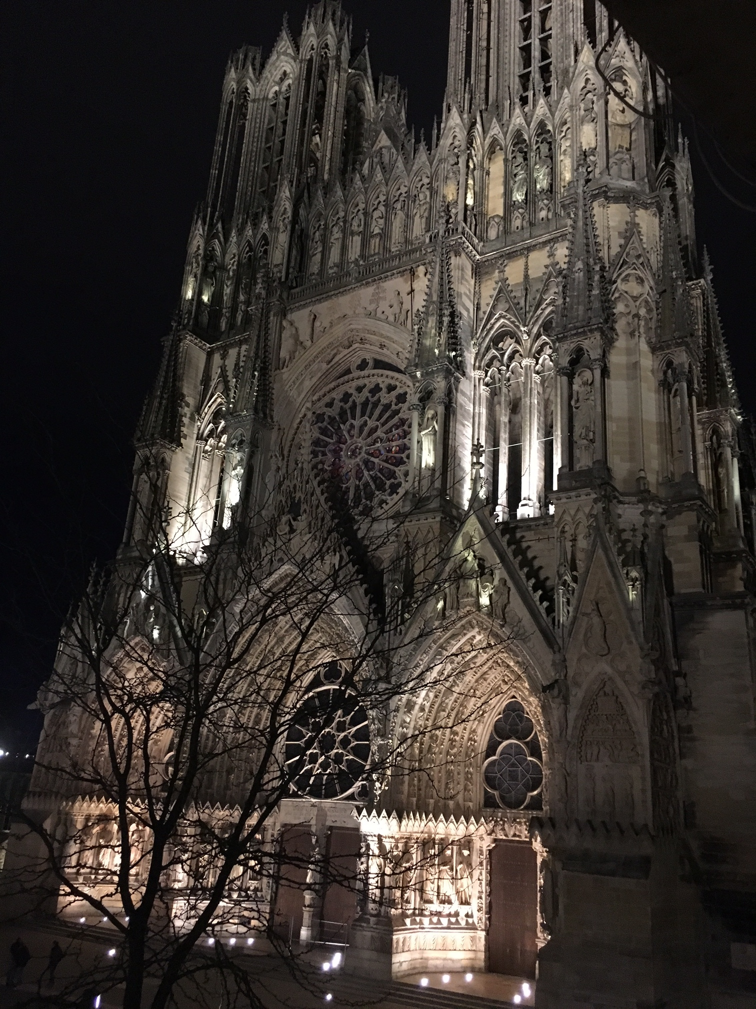 the Reims Cathedral at night