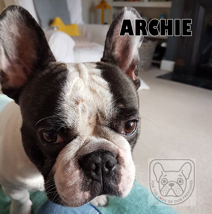 Archie.jpg