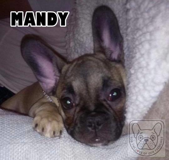 MandyG.jpg