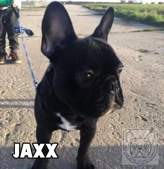 JaxxG.jpg
