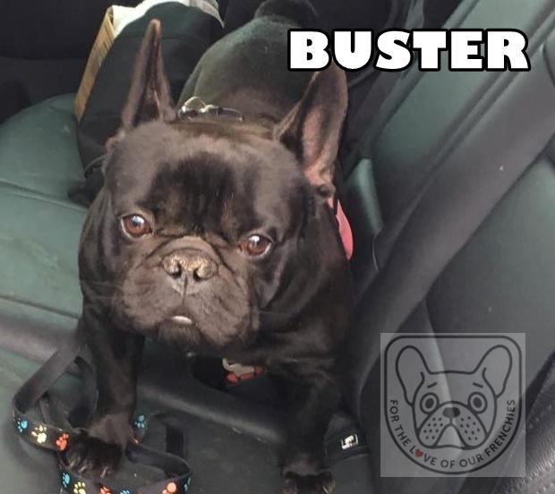 BusterG.jpg