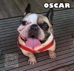 OscarH.jpg