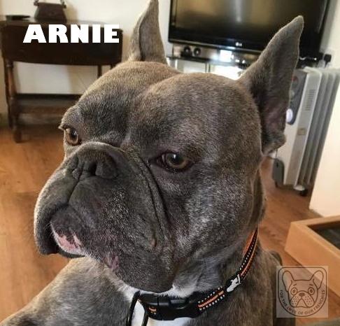 ArnieG.jpg