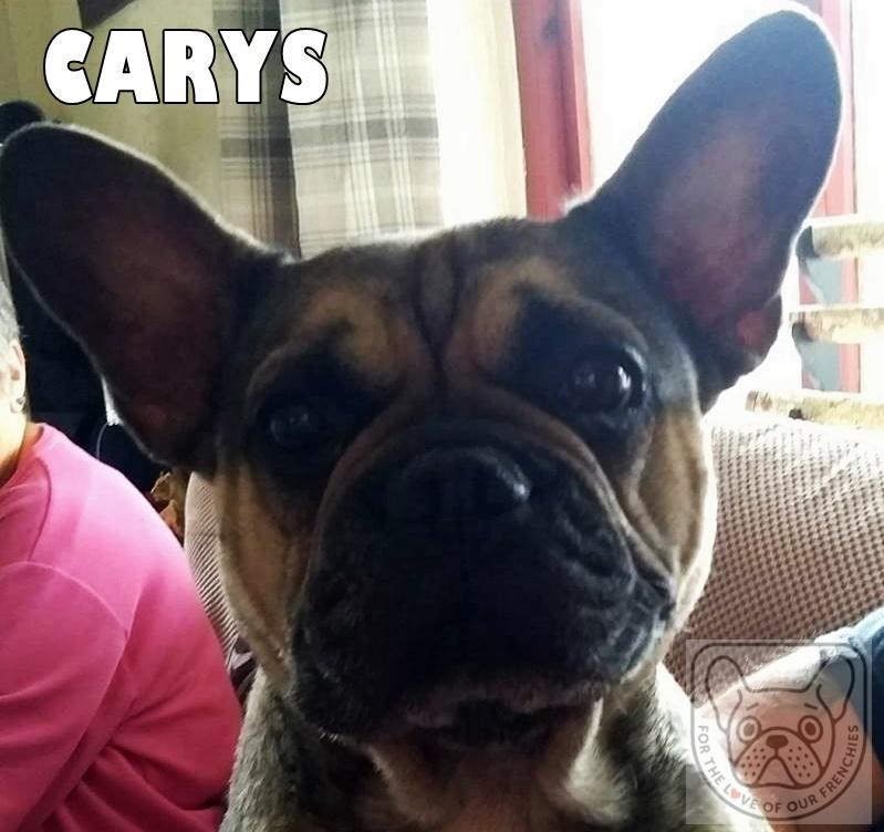 Carys1G.jpg