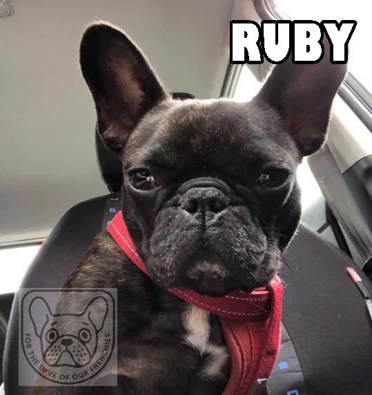 RubysatG.jpg