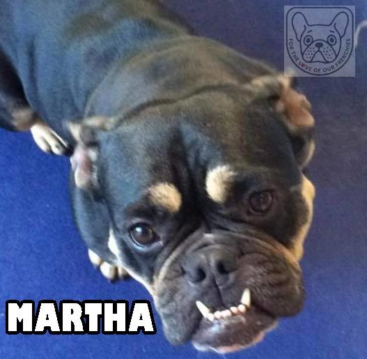 MarthateefsG.jpg