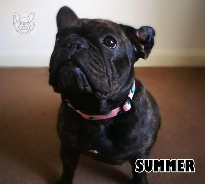 SummerG.jpg