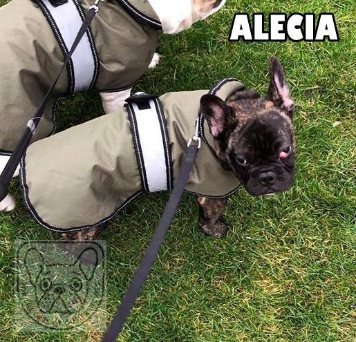 AleciaG.jpg