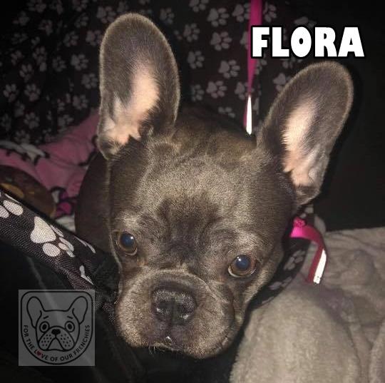 FloraA.jpg