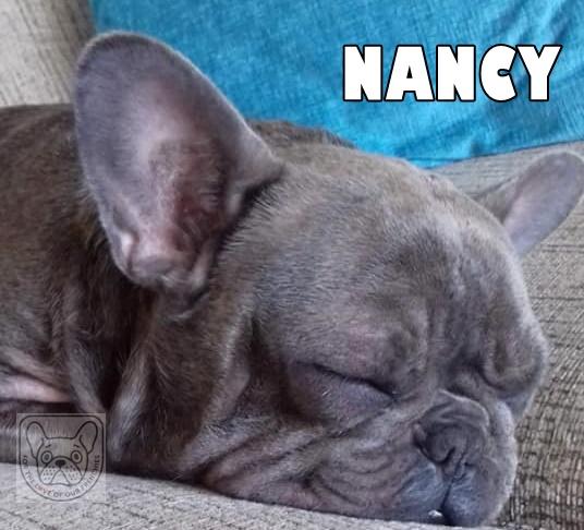 NancyG.jpg