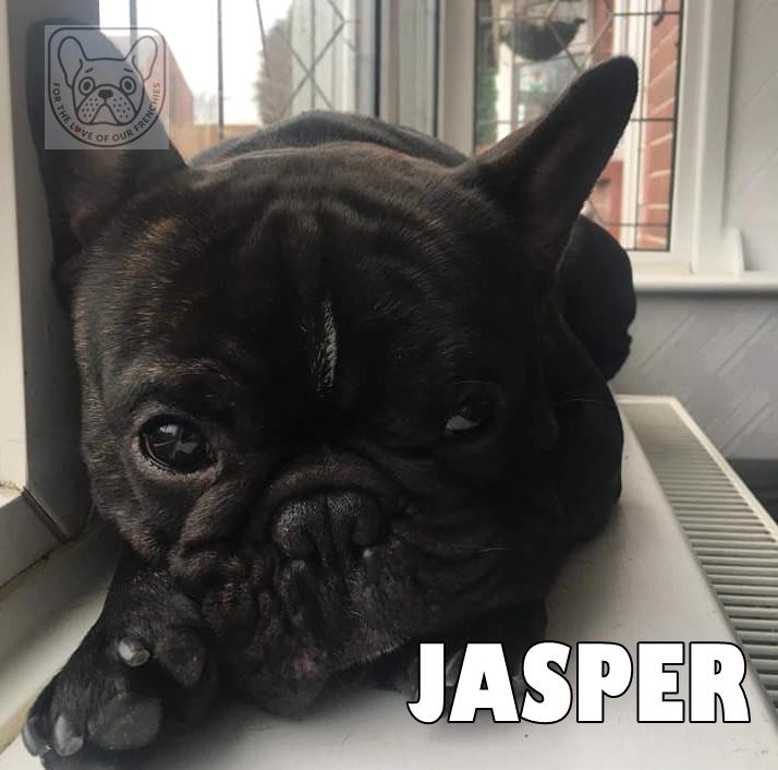 JasperG.jpg