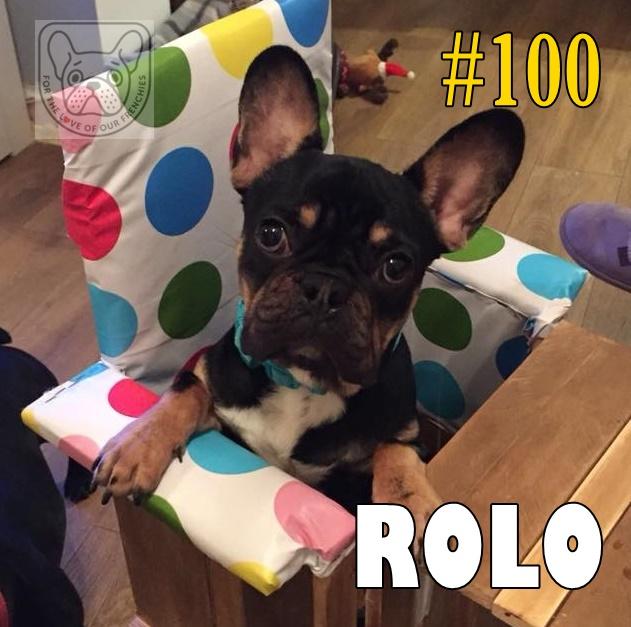 Rolo100A.jpg
