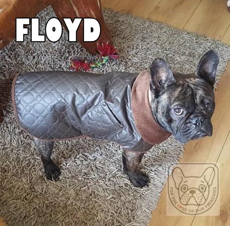 FloydSatG.jpg