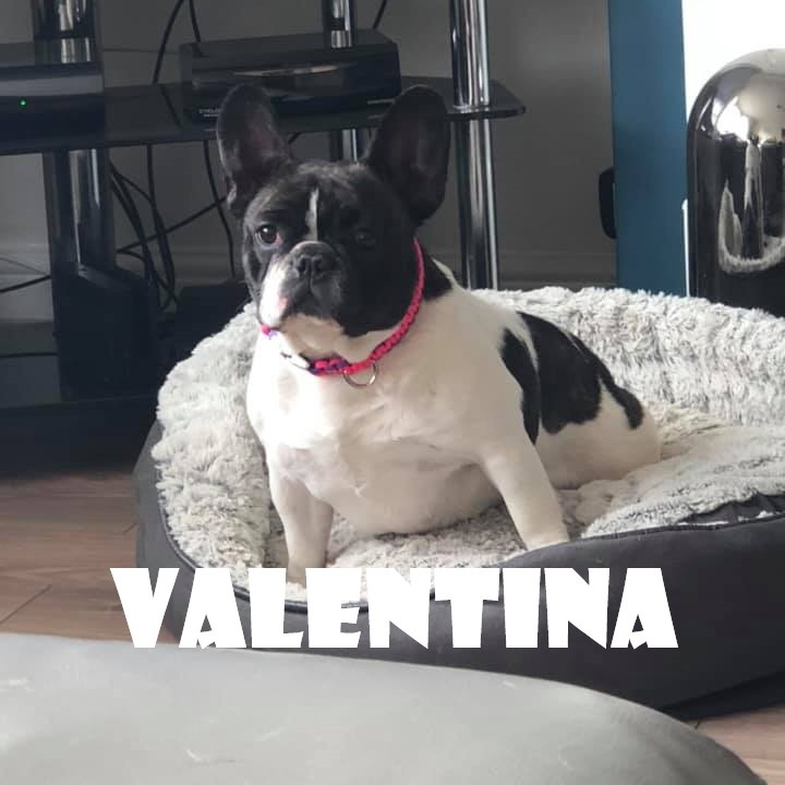 VALENTINA.jpg