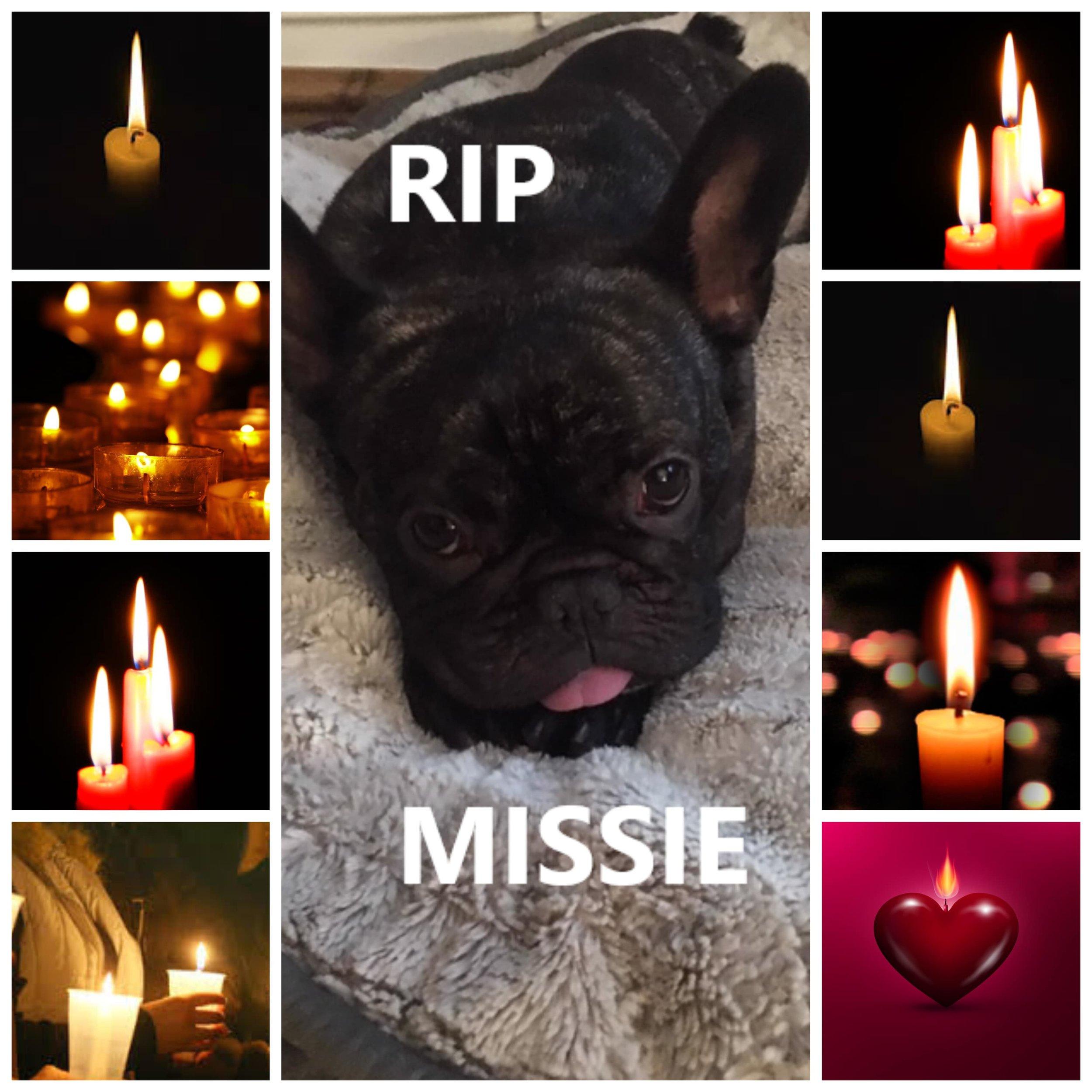 MISSIE RIP-min.jpg