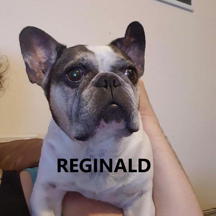 reginald.jpg