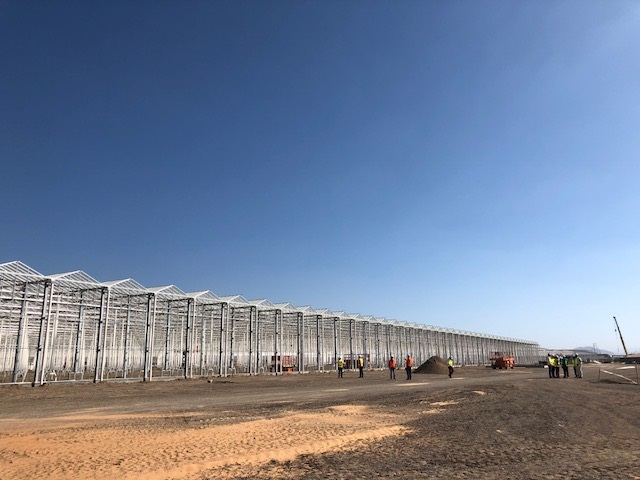 Timelapse - Watch the amazing build process in Al Ain.