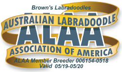 Brown's Labradoodles ALAA International Logo(1).png